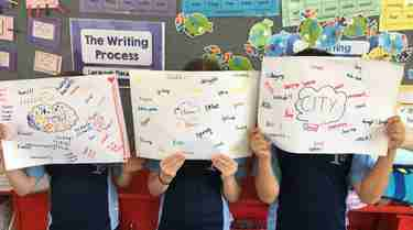 Visible Learning: Year 3 McManus